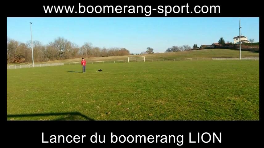 Boomerang Lion