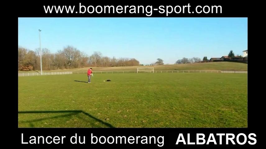 Boomerang Albatros